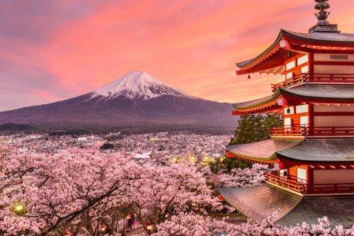 Kuliner-Jepang